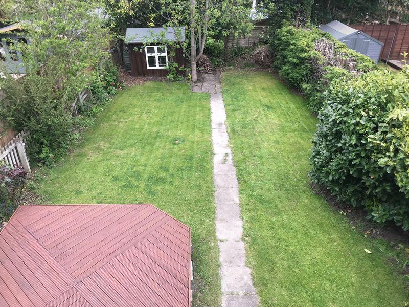 Dene Terrace