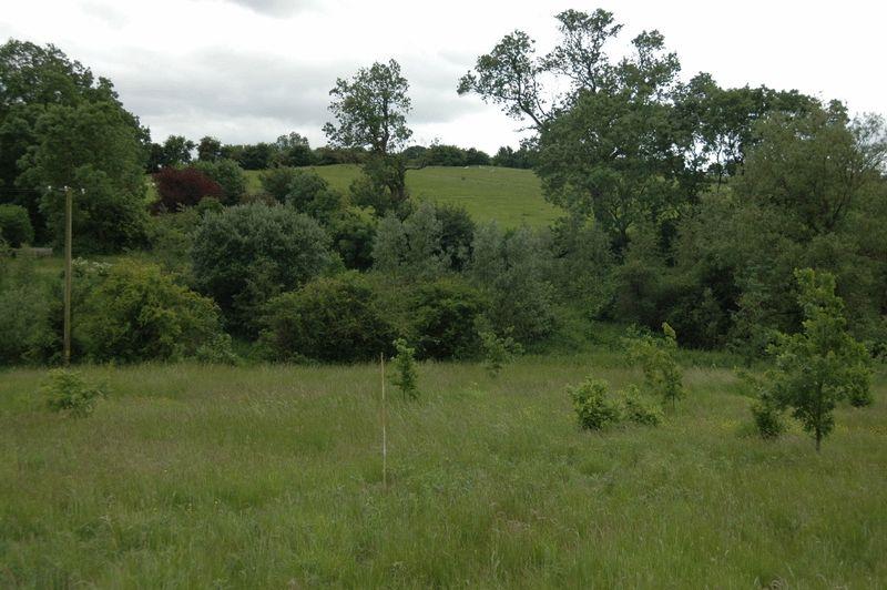 College Farm Lane