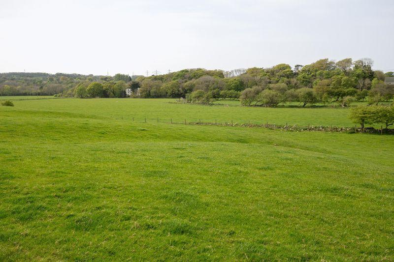 Row Farm
