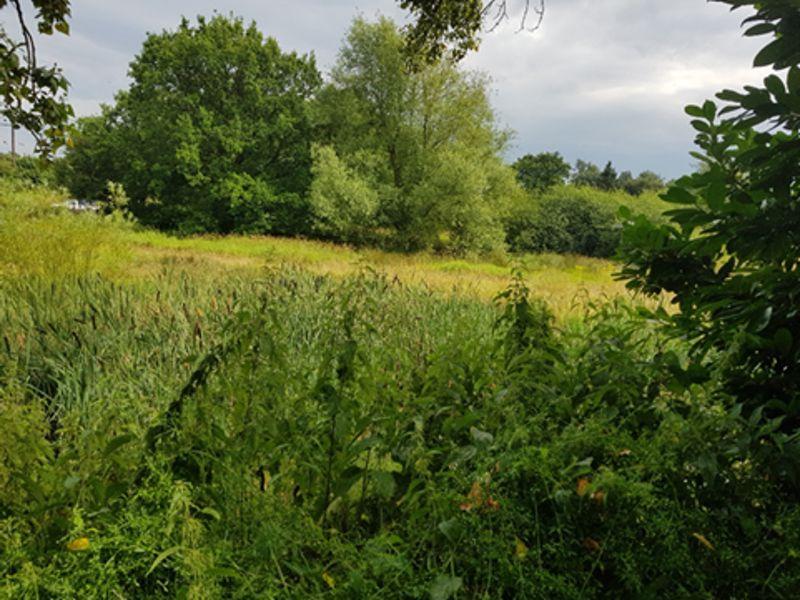 Warmingham Lane Moston