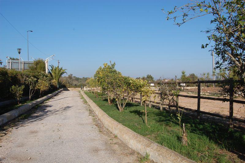 Estrada das Sesmarias Mato Serrao