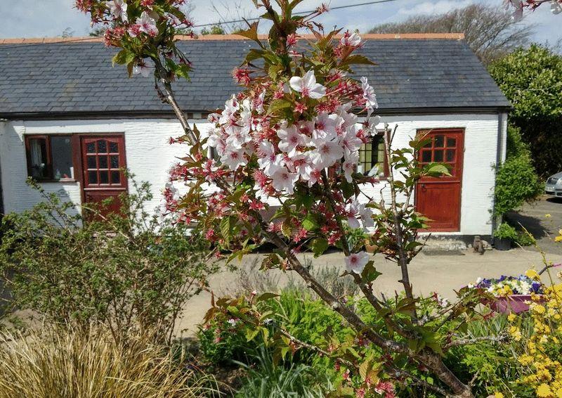 Boturnell Farm St Keyne