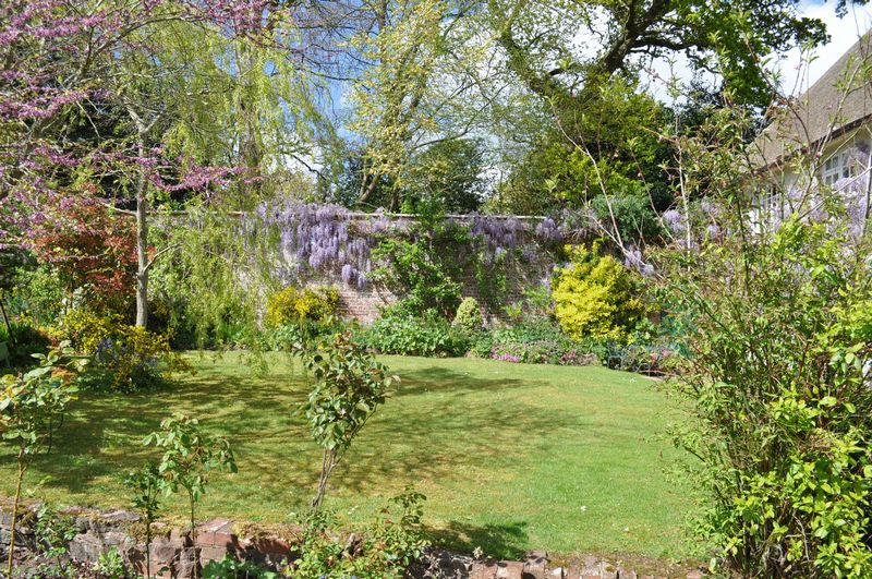 VIEW OF WISTERIA