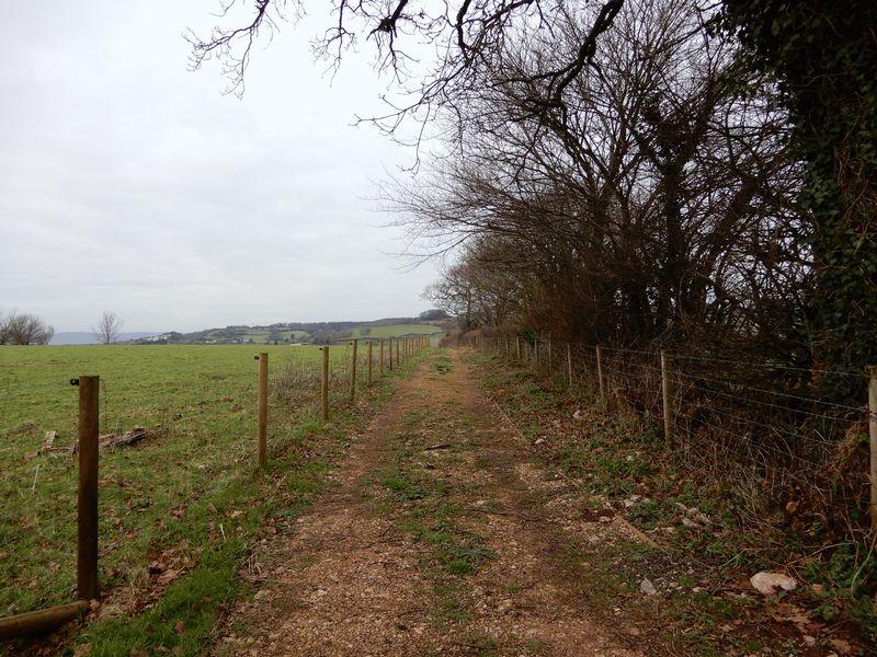 Hackney Lane Netherton