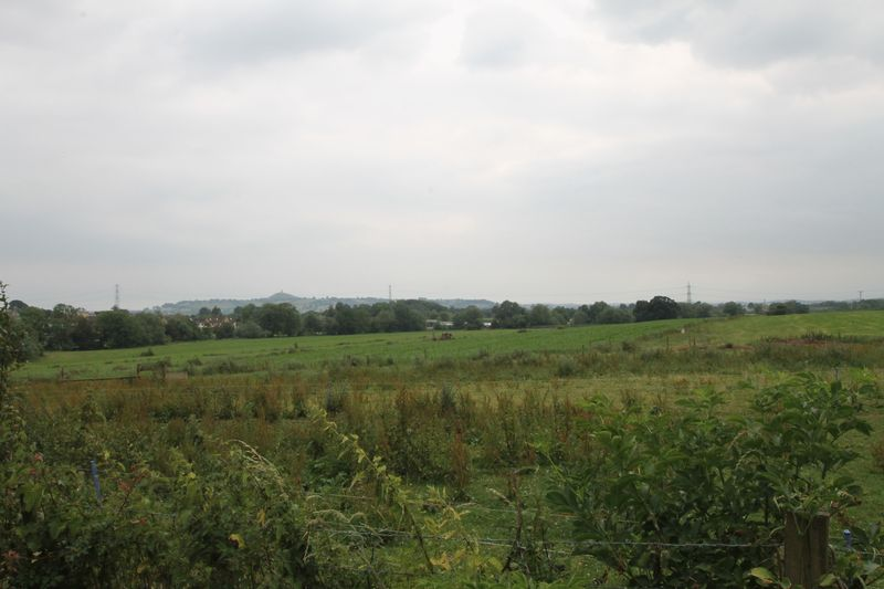 The Drang Coxley Wick