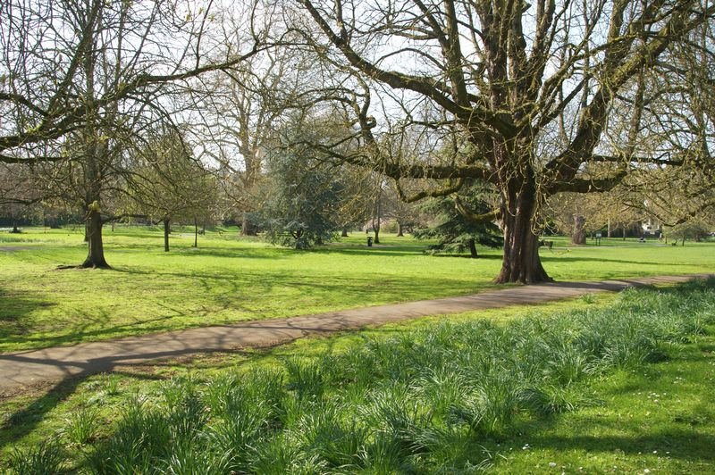 Henrietta Gardens