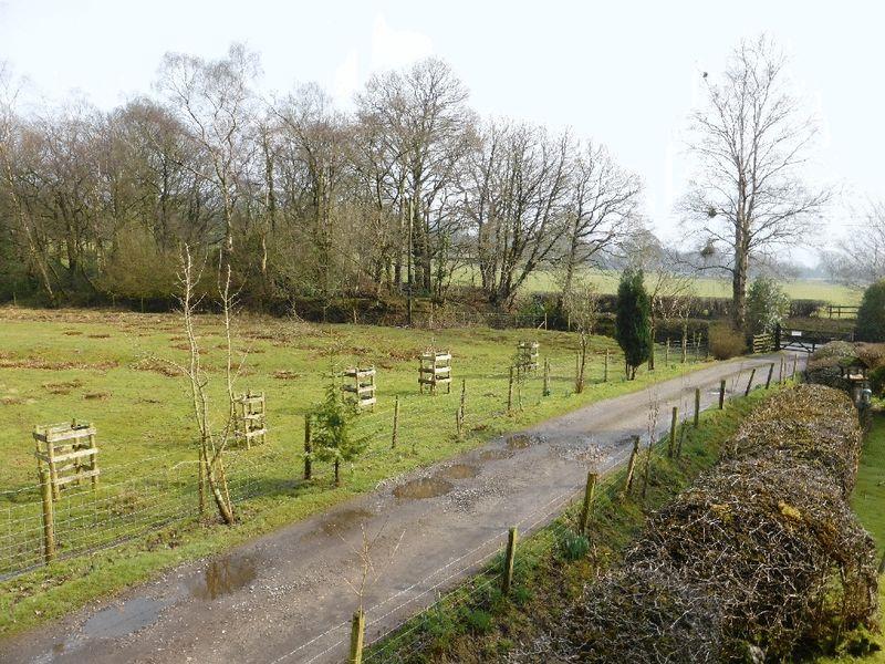 Lea House Farm