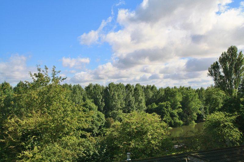 Green Road, Shillingford Hill