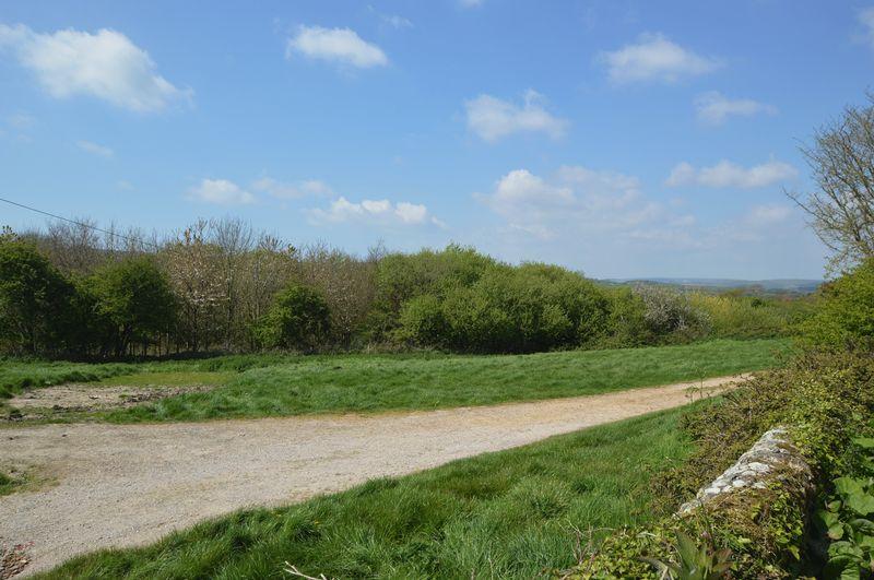 Nettlecombe Lane