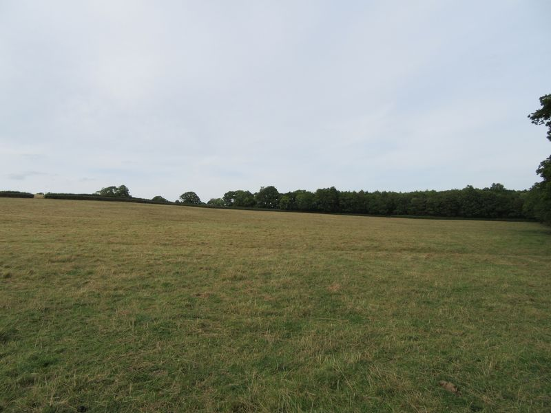 Land at Denbury