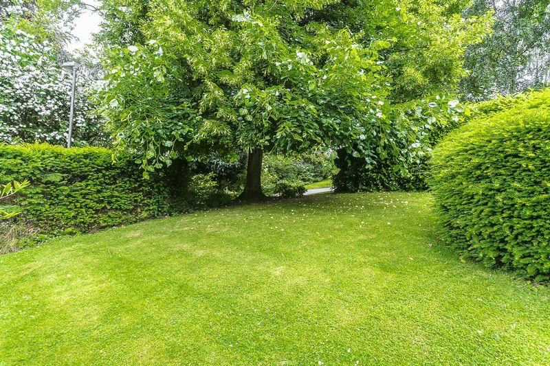 Chichele Gardens