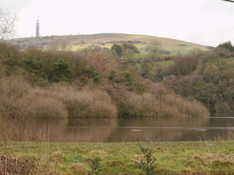 Lakeside Bosley