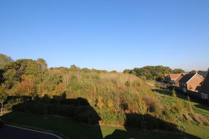 Linnet Lane