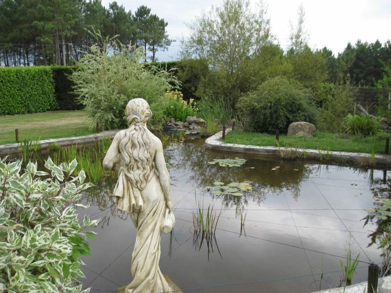 Pond and statue