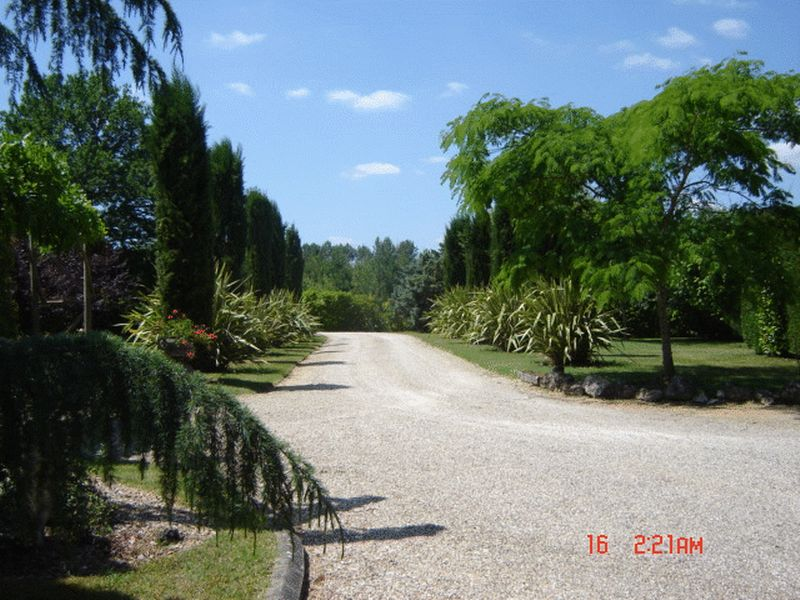 Entrance drive looking away from house
