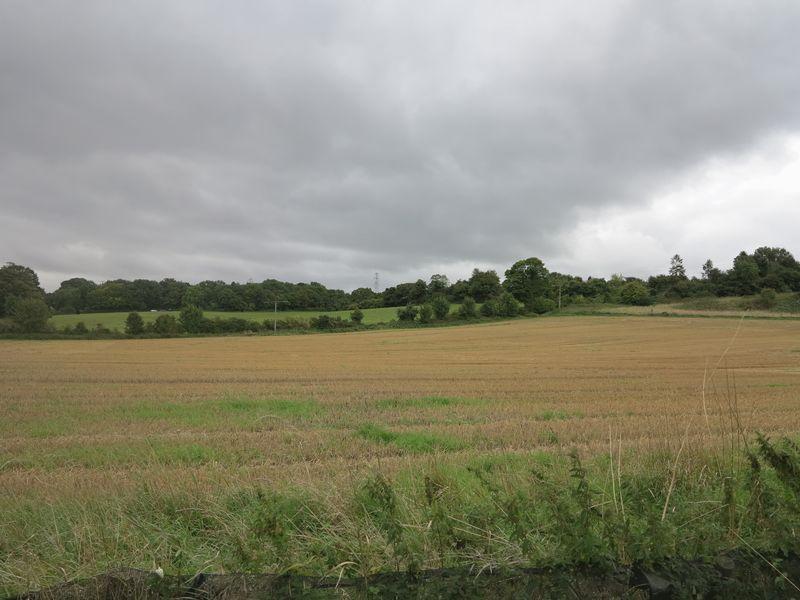 Bolts Hill Chartham
