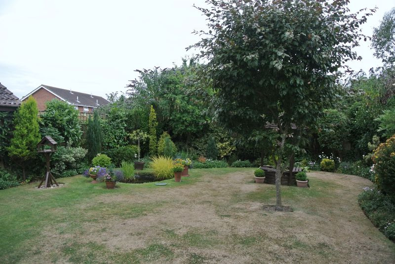 Magnolia Rise Broomfield