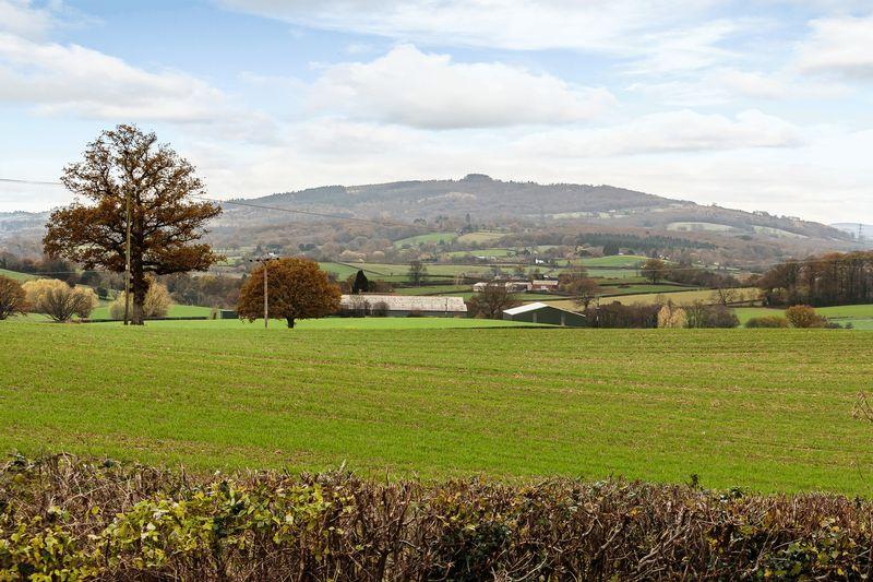 Hillend Green