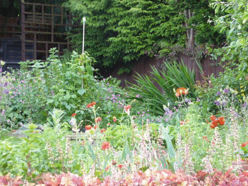 Garden in Season