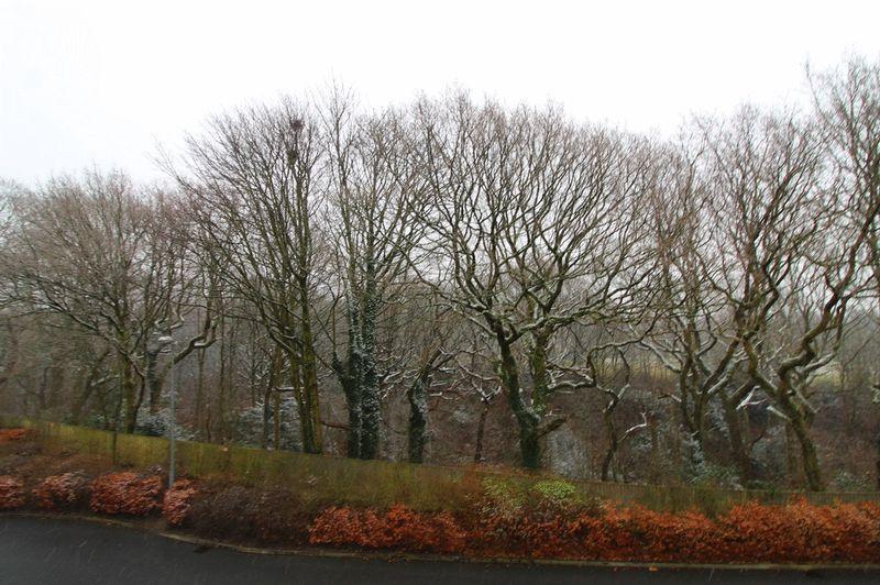 Oakwood Drive Worsley