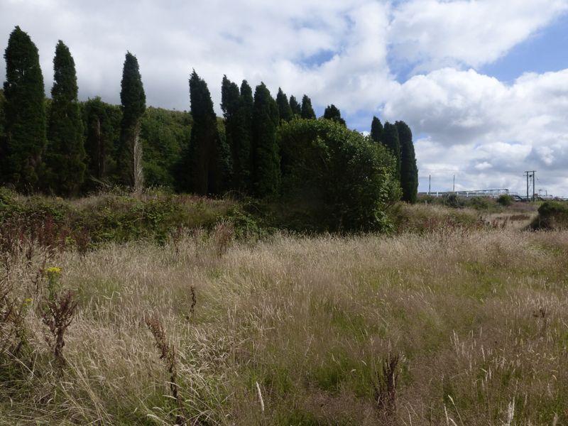 Gwendra Farm Whitemoor