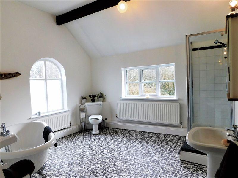 Large Bath/Shower Room