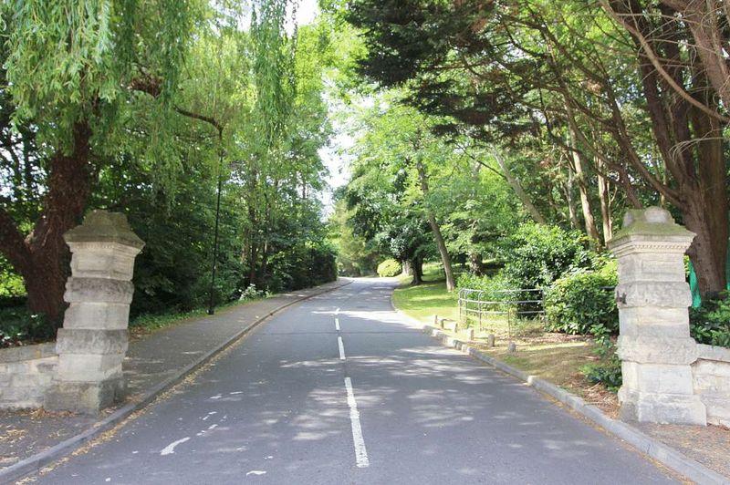 Eveleigh Avenue