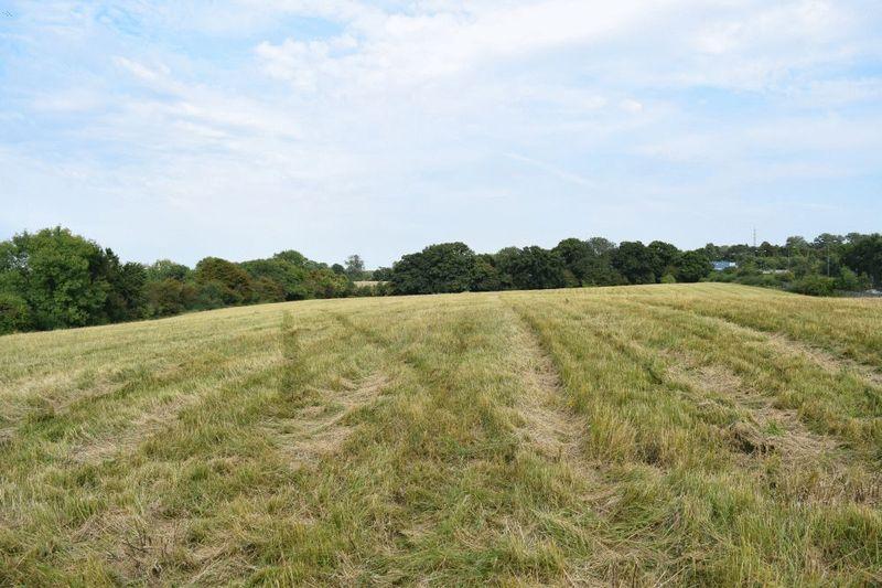 Margery Wood Lane