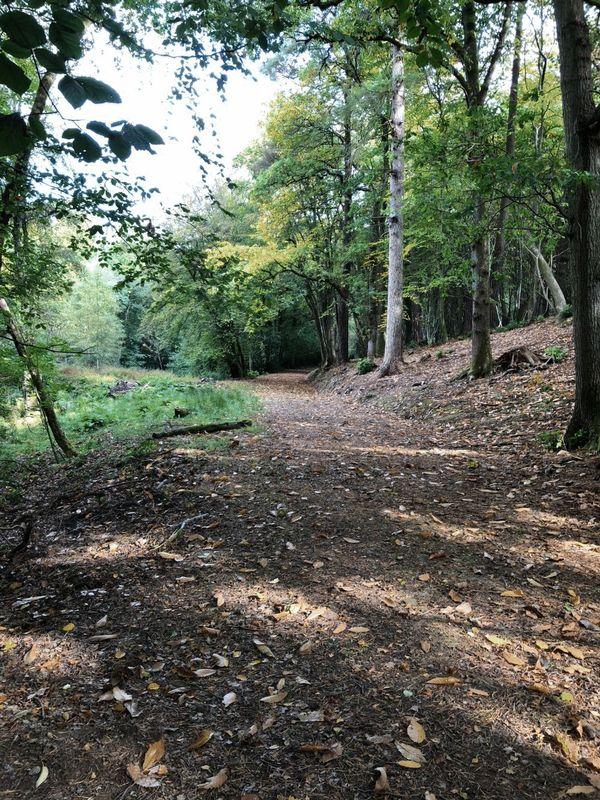 Leechpond Hill