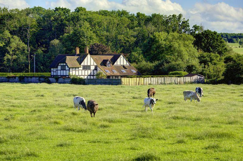 Shepherds Lane Hurley