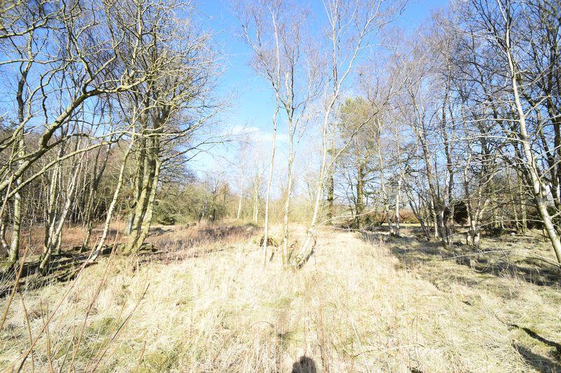 Millrigg Road Wiston