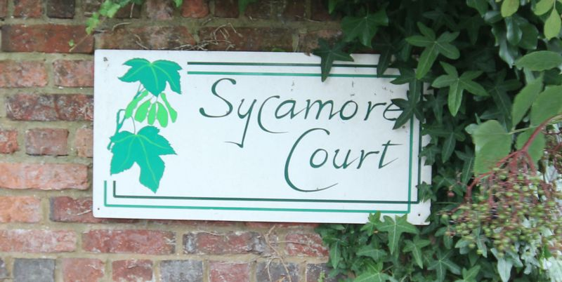 Sycamore Court