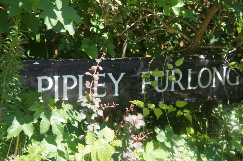 Pipley Furlong