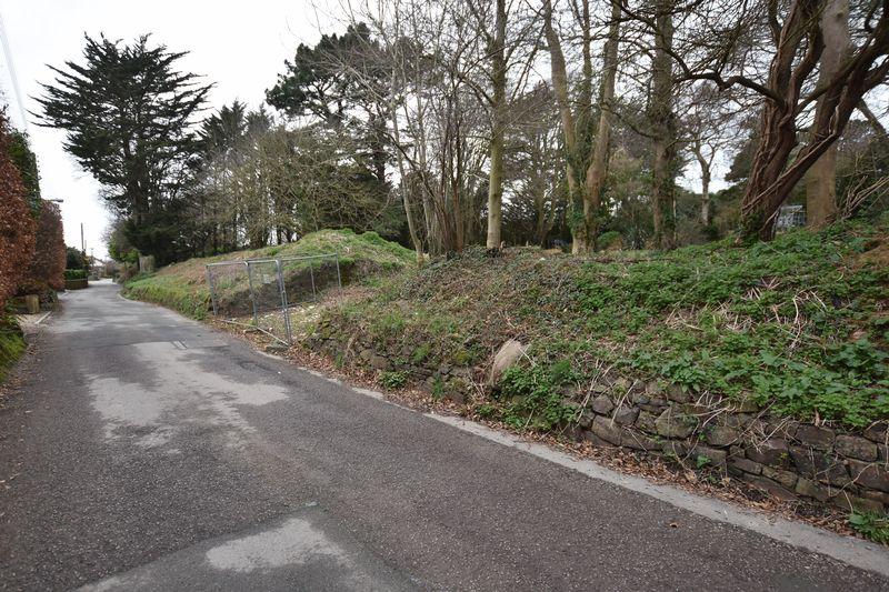 Lower Park Road