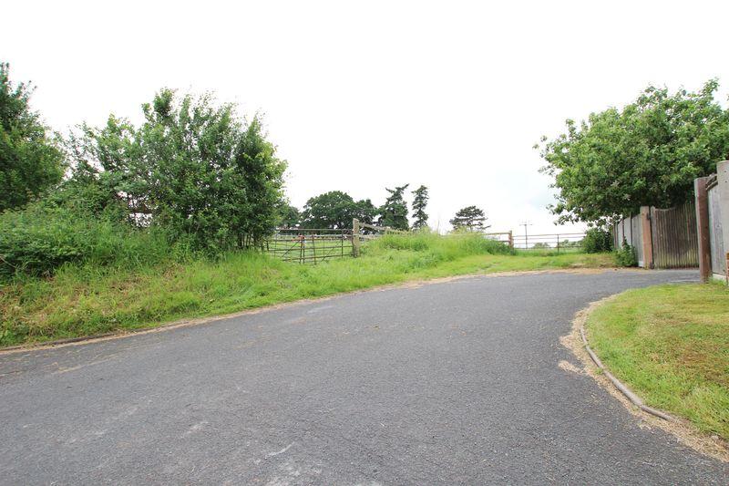 Lumber Lane