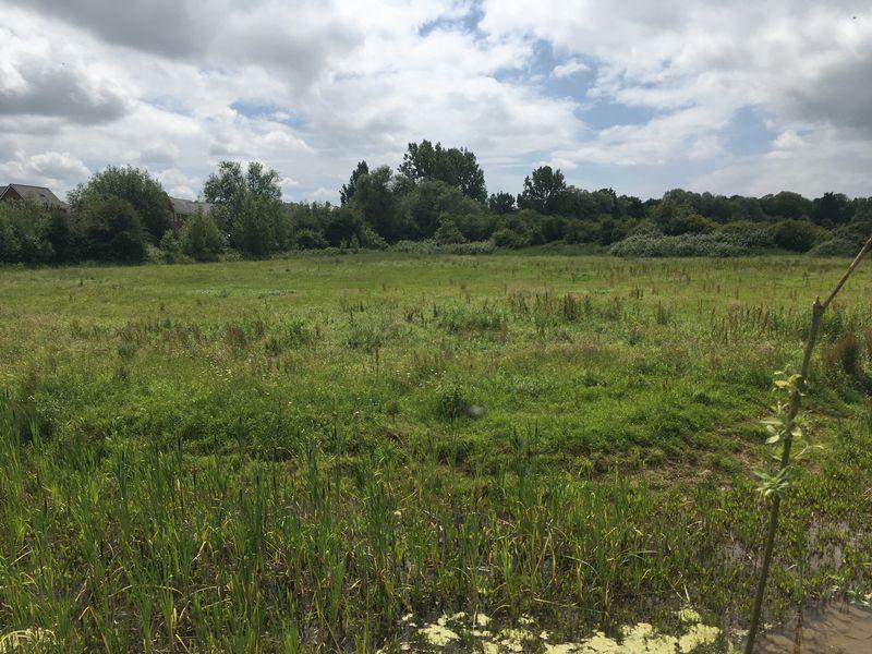 Severnside Farm Walham