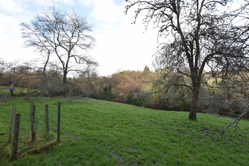 Part of the 12 Acre plot