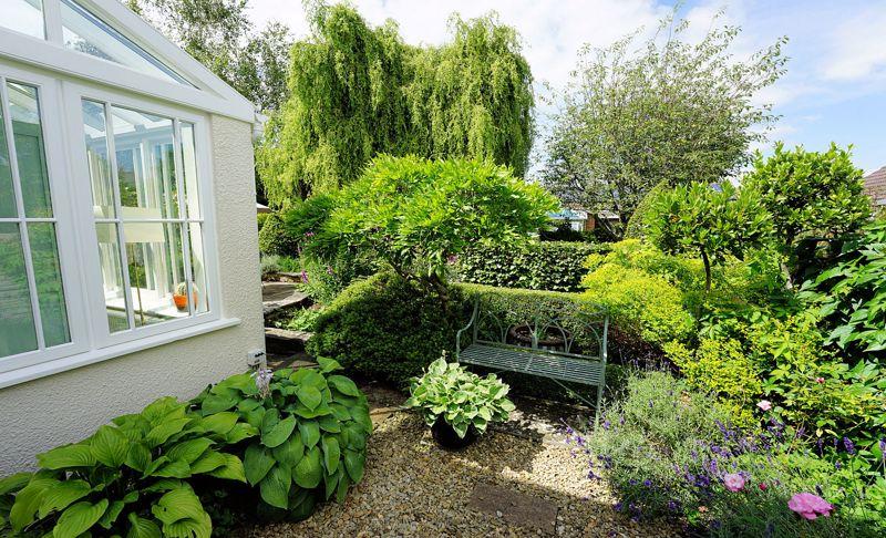 Specimen trees and shrubs