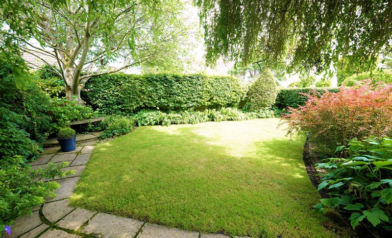 Secluded lawn