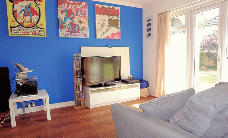 Snug - sitting room - media room