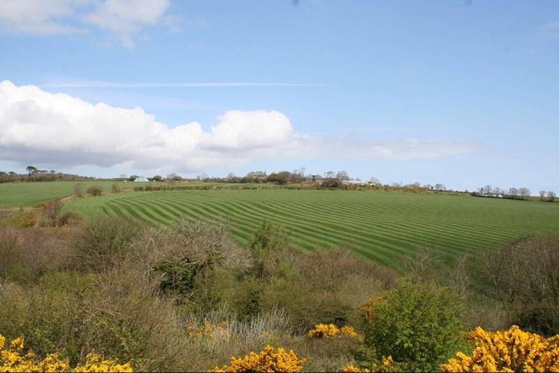 Whitebridge Hill