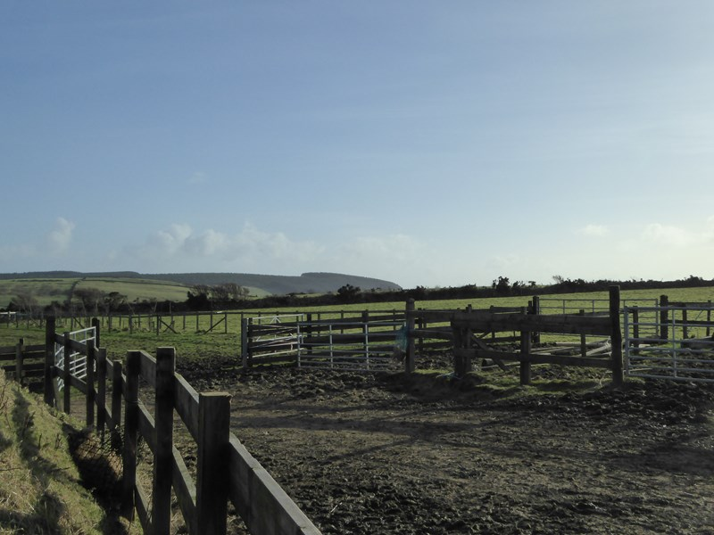 30 Acres Plus Stables
