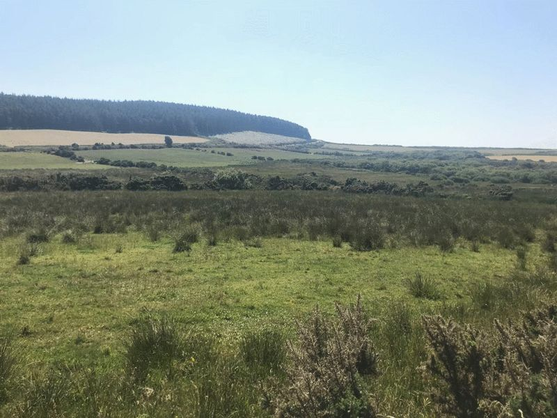 Land at Stugadhoo Santon