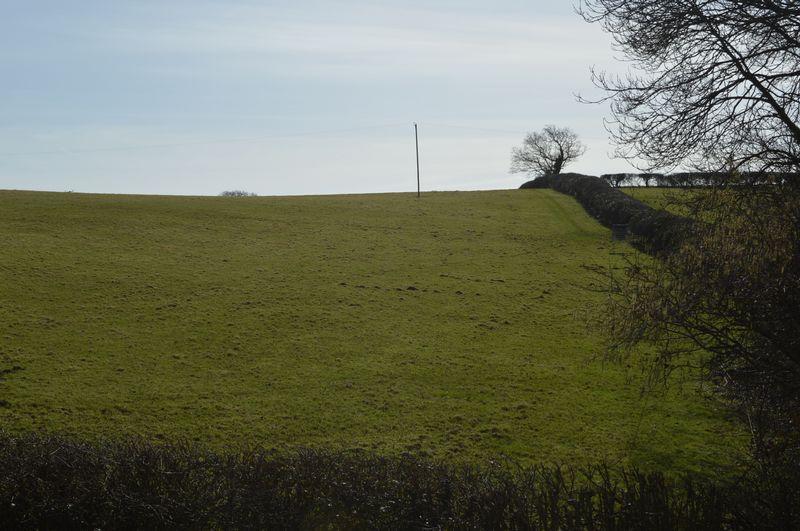 Stroud Wood Road