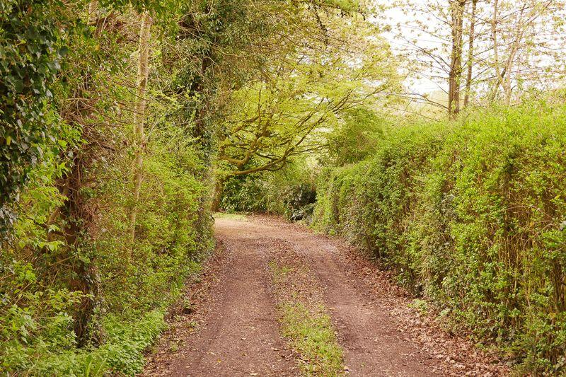 Cobwell Road Broseley Wood