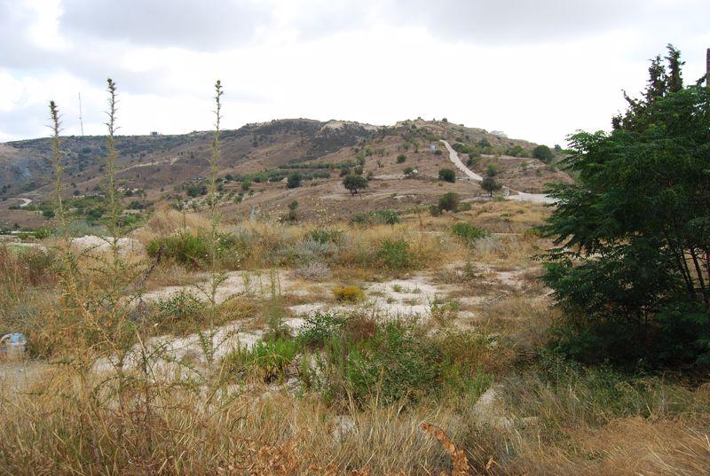 Marathounta