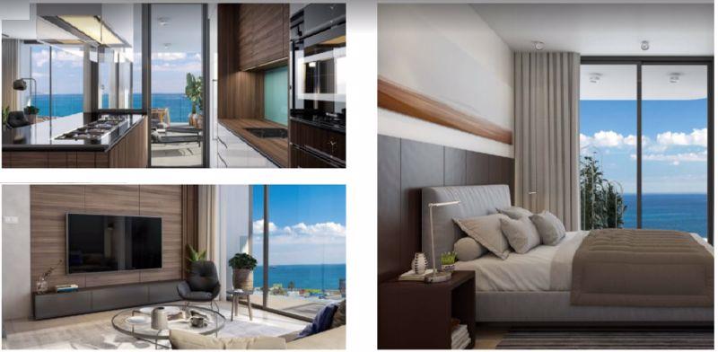 Kitchen/lounge/bedroom areas