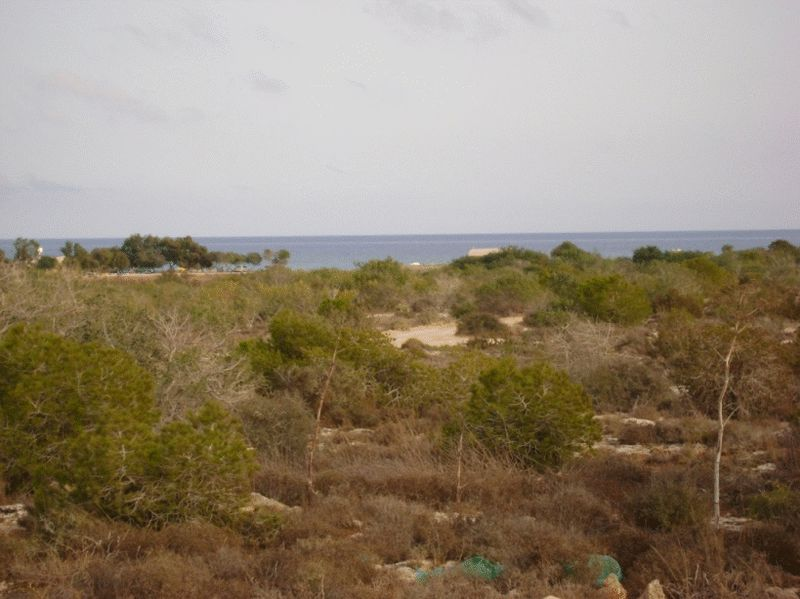 land-famagusta-for-sale