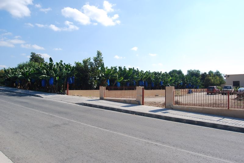 View of plot from road