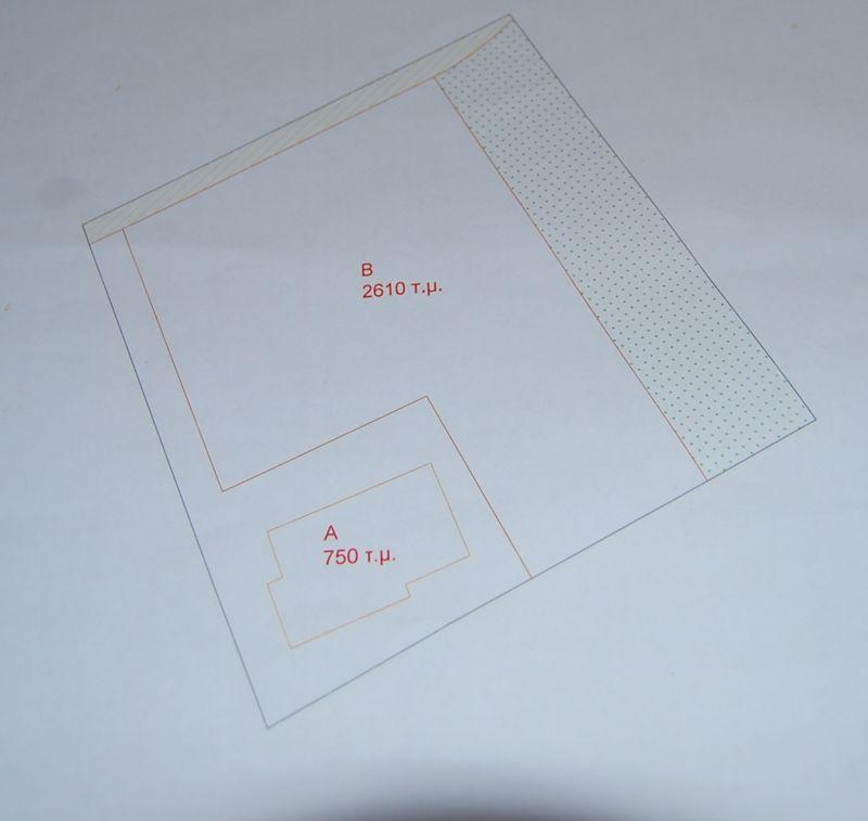 Plot size and shape